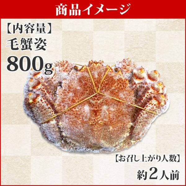 毛ガニ 毛蟹 姿 800g 北海道産 カニ ギフト 海鮮|snowland|04