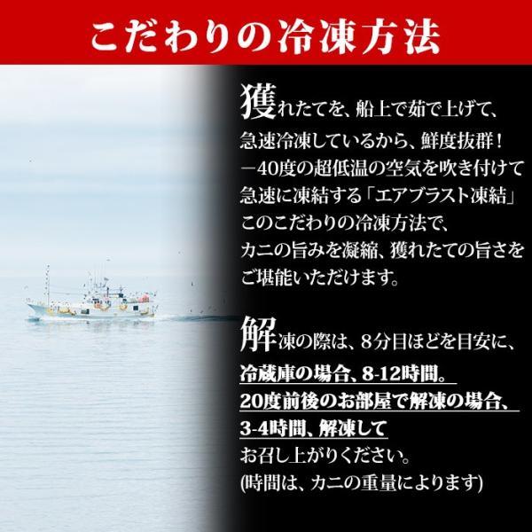 毛ガニ 毛蟹 姿 800g 北海道産 カニ ギフト 海鮮|snowland|09