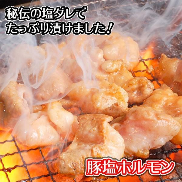 肉 BBQ バーベキュー ホルモン 焼肉 豚塩 280g 訳あり 業務用 お取り寄せ グルメ 父の日|snowland|02