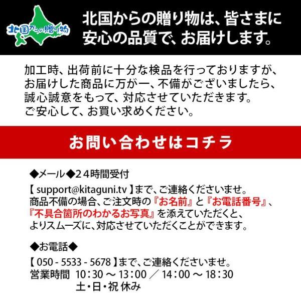 スープカレー レトルト 業務用 北海道 ご当地カレー 南家 ココナッツ 4食セット お取り寄せ ギフト|snowland|11
