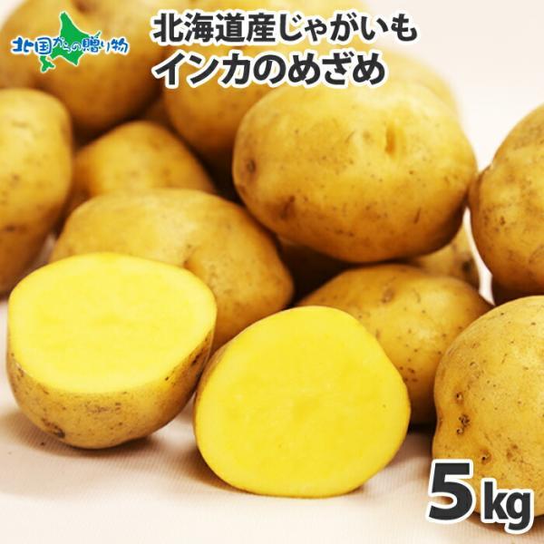 じゃがいも 北海道 インカのめざめ 5kg 5キロ 産地直送 馬鈴薯 野菜 ギフト プレゼント 食べ物 ジャガイモ 食品
