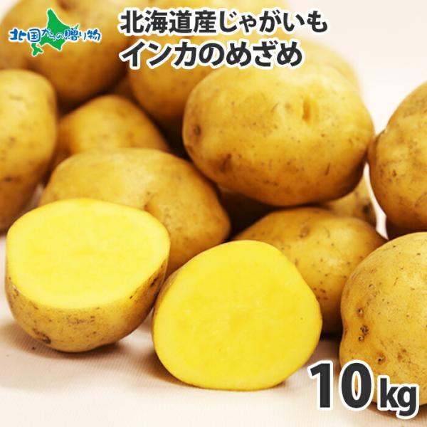 ジャガイモ 北海道 インカのめざめ 10kg 産地直送 馬鈴薯 じゃがいも ギフト まとめ買い 食べ物 プレゼント 食品