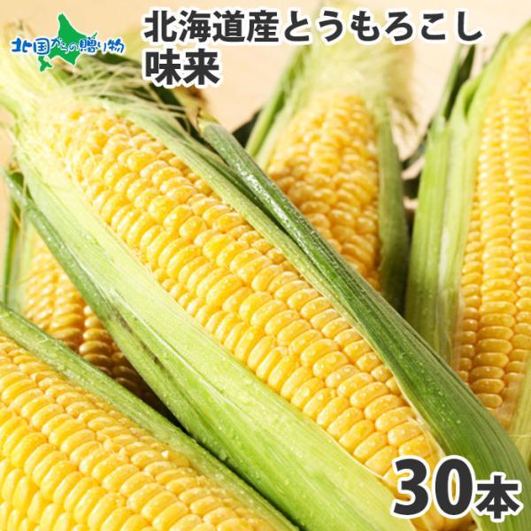とうもろこし 北海道 30本 約13kg お取り寄せ 美味しい トウモロコシ 味来 甘い お土産 バーベキュー グルメ ギフト 食べ物