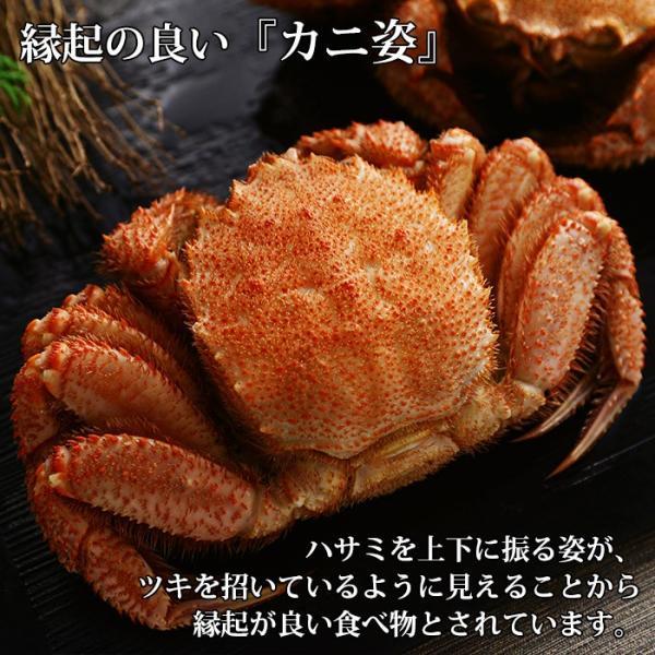 毛ガニ 毛蟹 かに 北海道産 姿 ボイル 4kg カニ ギフト 海鮮 贈答用|snowland|07