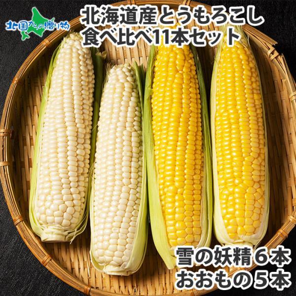 とうもろこし 雪の妖精 おおもの 食べ比べ 11本 北海道 トウモロコシ お取り寄せ グルメ 白いとうもろこし 甘い ギフト BBQ 食材