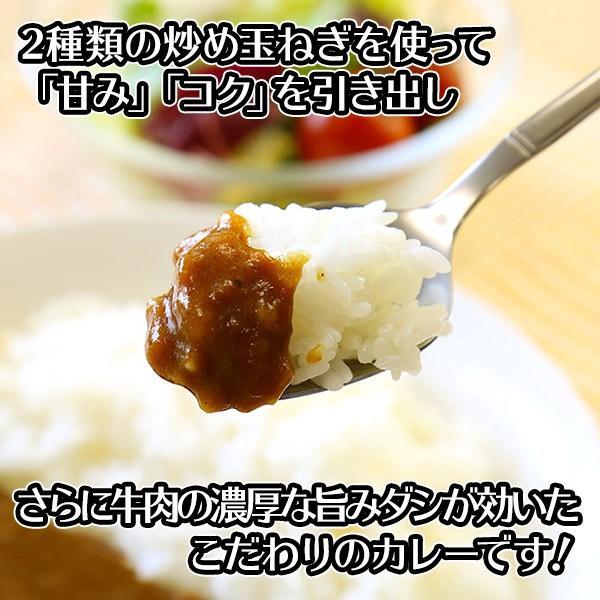 訳あり ポイント消化 カレー レトルト  食研カレー セット 4食 お取り寄せ メール便 セール|snowland|03