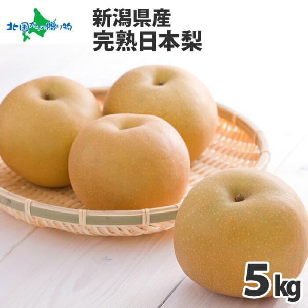 完熟 日本 なし 5kg 梨 幸水 豊水 あきづき 新高 新興 愛宕 果物 ギフト 敬老の日 プレゼント 旬の果物 お取り寄せ フルーツ 新潟
