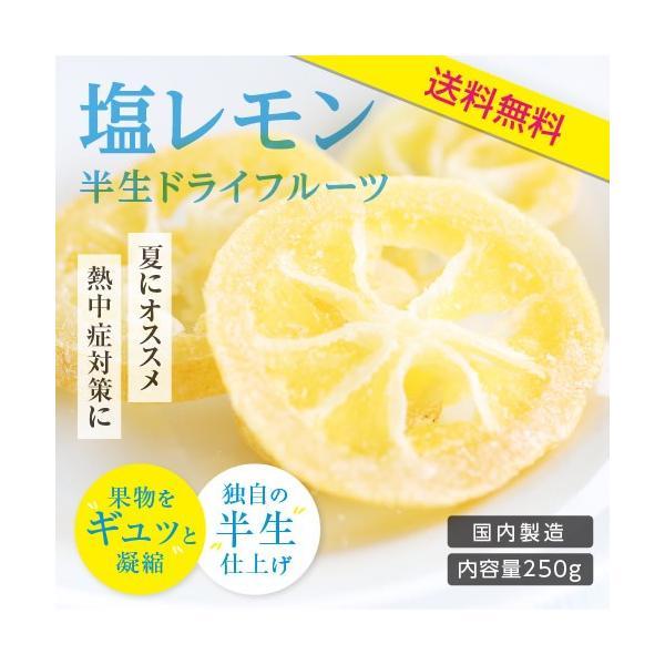 ドライフルーツ 国産 塩レモン 250g 送料無料 輪切り 熱中症 対策 予防 ドライ 塩 レモン おやつ 南信州菓子工房 お菓子作りにも