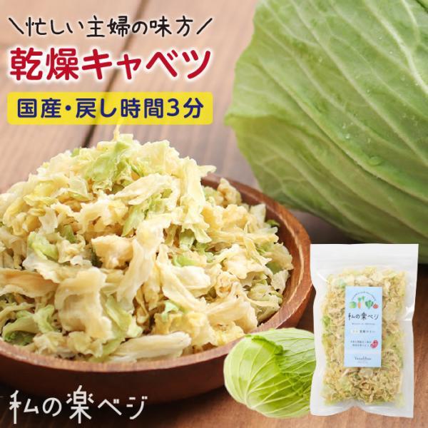 乾燥野菜 国産 乾燥キャベツ 私の楽ベジ 100g 国産きゃべつ使用 ドライ野菜 干し野菜 送料無料 | 保存食 主婦の味方 生野菜約1kg分