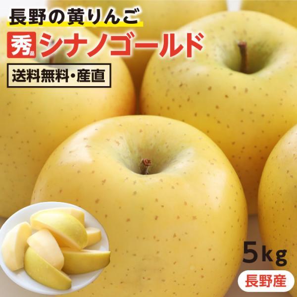 りんご シナノゴールド 5kg 長野県産 秀品 送料無料 産地直送 葉とらずリンゴ お取り寄せ 旬の果物 贈答用 贈り物 ギフト