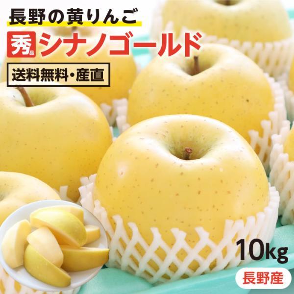 りんご シナノゴールド 10kg 長野県産 秀品 送料無料 産地直送 葉とらずリンゴ お取り寄せ 旬の果物 贈答用 贈り物 ギフト