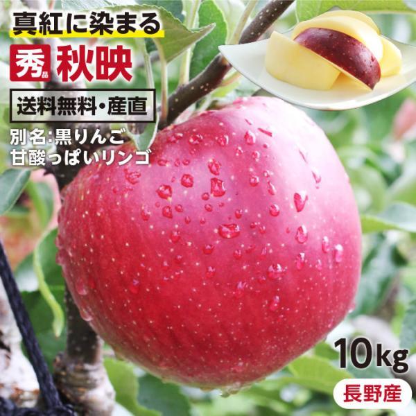 りんご 秋映 10kg 秀品 送料無料 長野県産 葉とらずリンゴ 旬の果物 フルーツ 産地直送 お取り寄せ 贈答用 贈り物 ギフト