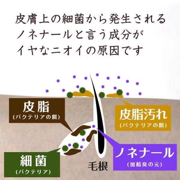 ボディソープ 体臭 加齢臭 メンズ 対策 予防 薬用 デオドラント 男 柿のさち KnS 薬用 柿渋 ボディ 450mL ボトル|soapmax|08