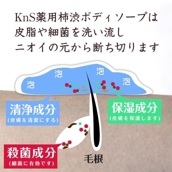 ボディソープ 体臭 加齢臭 メンズ 対策 予防 薬用 デオドラント 男 柿のさち KnS 薬用 柿渋 ボディ 450mL ボトル|soapmax|09