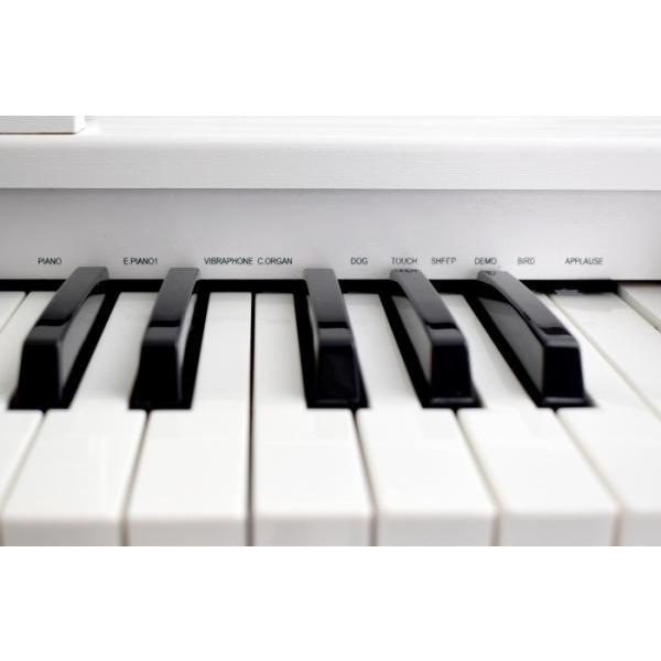 artesia アルテシア キッズ用 ピアノ 61鍵盤 FUN-1 WH ホワイト オールインワン 61鍵盤 キッズ ピアノ キーボード 白色 子供用 幼児用 soarsound 04