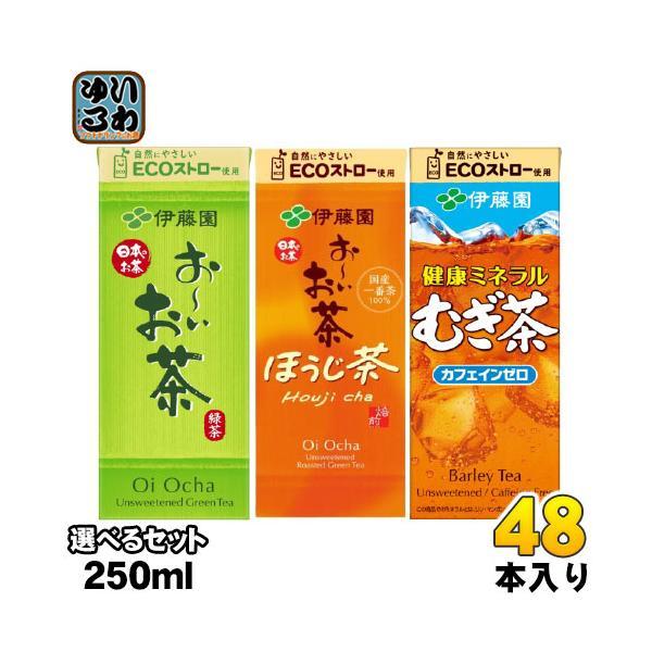 おーいお茶健康ミネラルむぎ茶250ml紙パック選べる48本(24本×2)伊藤園