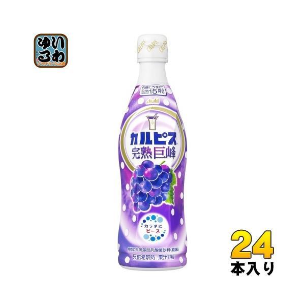 アサヒ カルピス 完熟巨峰 5倍希釈用 470ml プラスチックボトル 24本 (12本入×2 まとめ買い) 〔乳性飲料〕
