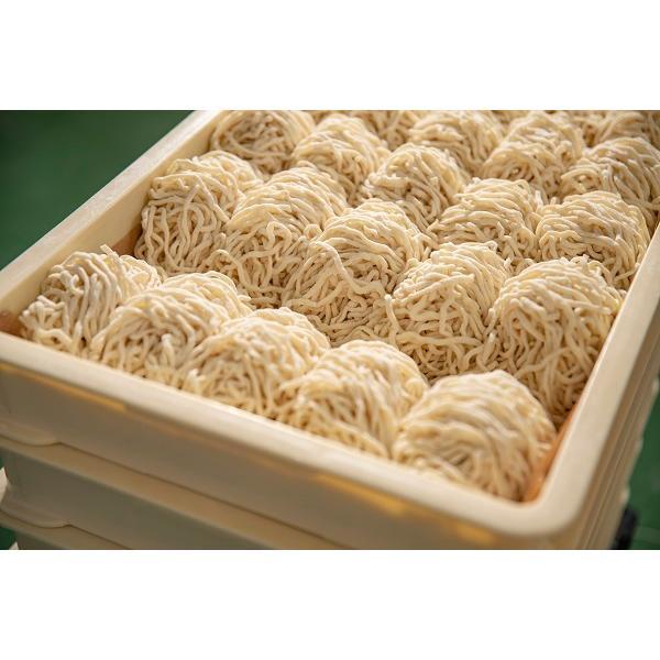 業務用麺 10食セット(しょう油・みそ・塩)|sogaseimen