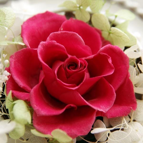 「即納」 プリザーブドフラワー 母の日 電報 結婚式 祝電 誕生日プレゼント セレナ ブリザードフラワー 送料無料|solargift|05