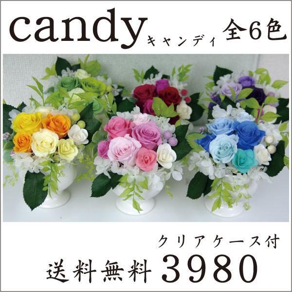 プリザーブドフラワー 結婚祝い 電報 祝電プレゼント 花 クリアケース ボックス candy 送料無料|solargift