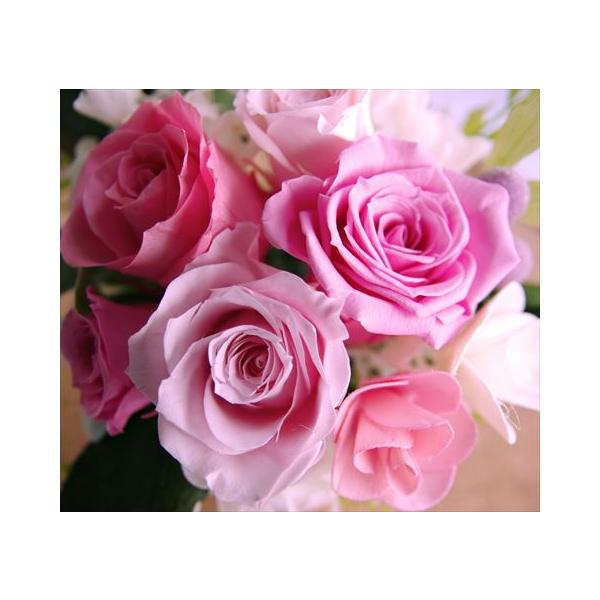 プリザーブドフラワー 結婚祝い 電報 祝電プレゼント 花 クリアケース ボックス candy 送料無料|solargift|03