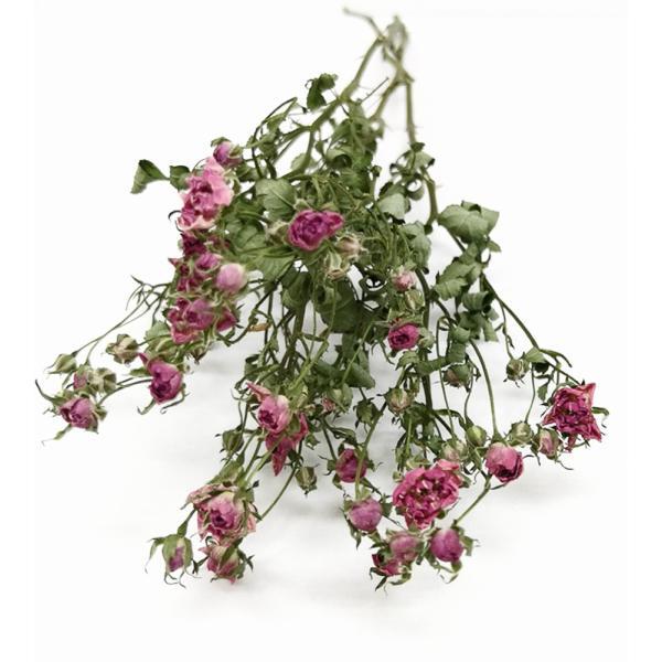 ドライフラワー 花材 リトルウッズ ピンク 3本入 そらプリ|solargift