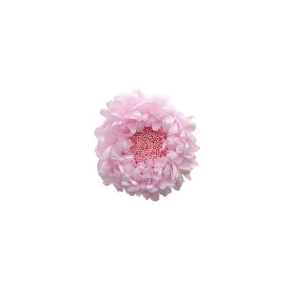 アスター ベイビーピンク 小分け 1輪入 マム プリザーブドフラワー 材料 花材 フロールエバー|solargift