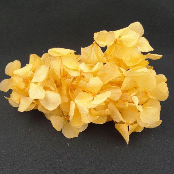 プリザーブドフラワー 材料 花材 HYDRAGEAアジサイ ピーチ 小分け あじさい 紫陽花|solargift