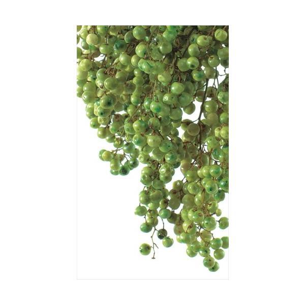 ペッパーベリー プリザーブド ライトグリーン 約55g 大地農園|solargift