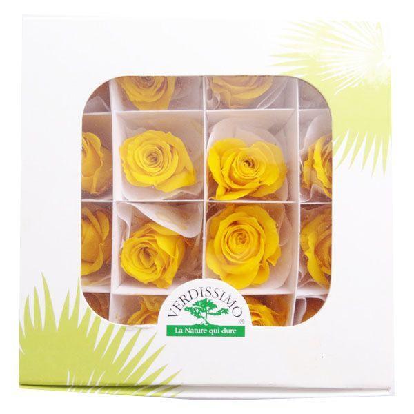 プリンセスローズ サフランイエロー 箱 16輪入 プリザーブドフラワー 材料 花材|solargift