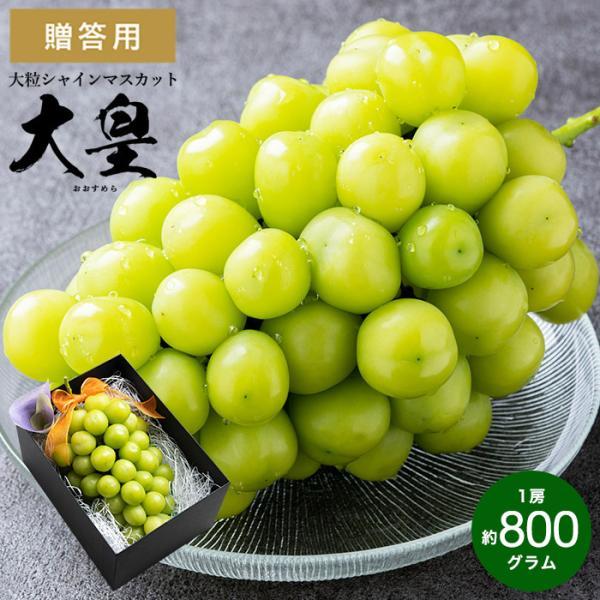 大皇(おおすめら)シャインマスカット 約800g 送料無料 / 兵庫県産 葡萄 ブドウ ぶどう 高級 フルーツ ギフト 9月下旬以降お届け 期間限定*o-M-muscat2*