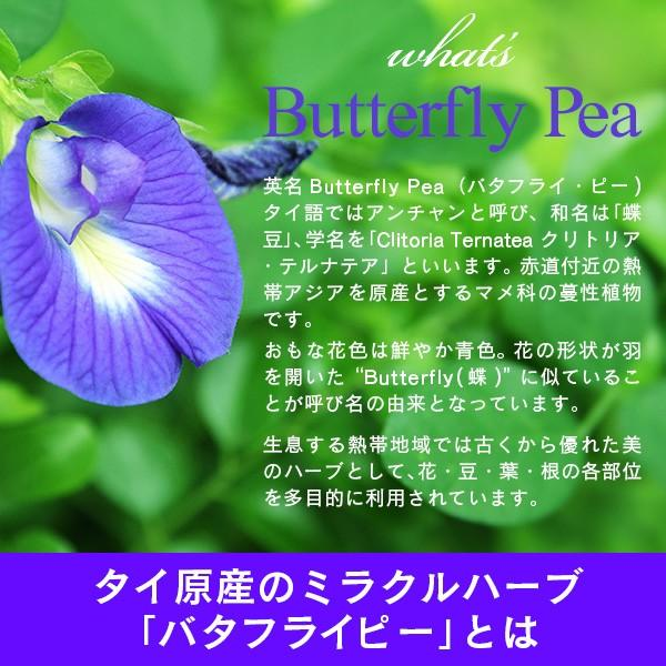 青いお茶 バタフライピー 2袋セット ブルーハーブティー|sonique|05