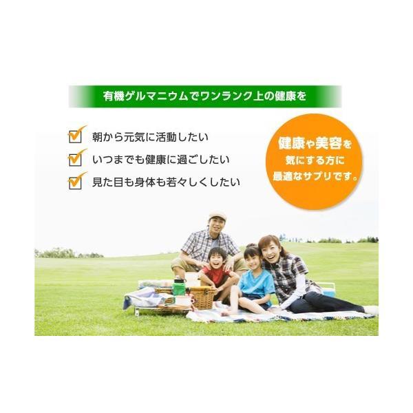 健康食品 飲む有機ゲルマニウム カプセル 250mg×10粒 日本製|soseikan-ya|09