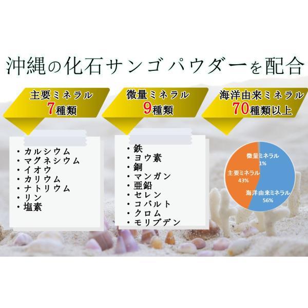 健康食品 飲む有機ゲルマニウム入り 250mg×30粒 そせいサプリメント 日本製 自社生産|soseikan-ya|05