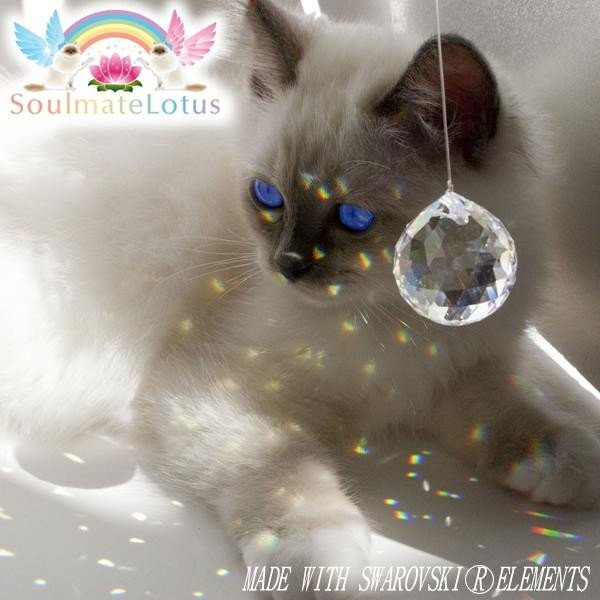 猫のおあそびポール お魚ファミリー ロータイプ 高さ71.5cmサンキャッチャー|soulmate-lotus|03
