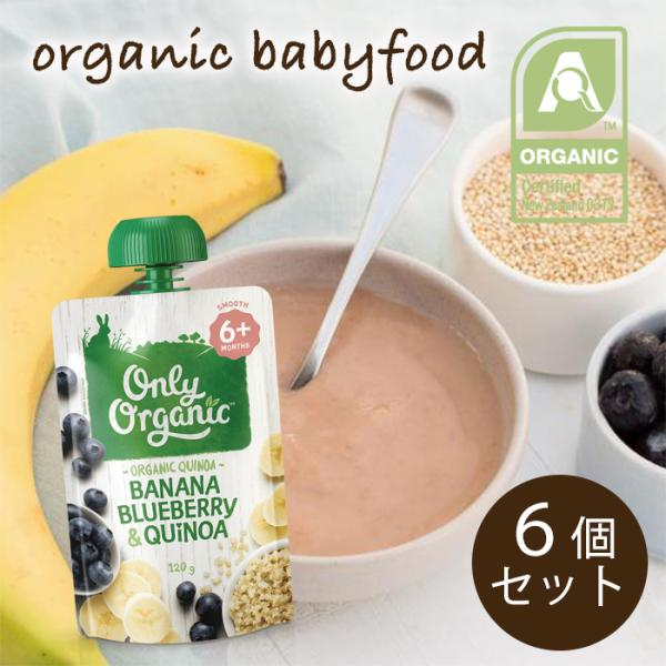 オンリー オーガニック ベビーフード アレルギー 対策(生後6か月頃〜ずっとOK用)バナナとブルーベリーとキヌアの朝食120g×6個セット 離乳食|southernbridge