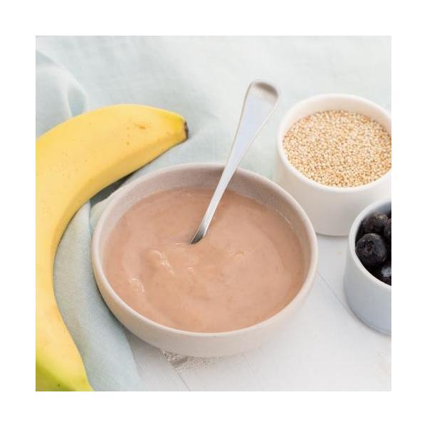 オンリー オーガニック ベビーフード アレルギー 対策(生後6か月頃〜ずっとOK用)バナナとブルーベリーとキヌアの朝食120g×6個セット 離乳食|southernbridge|08