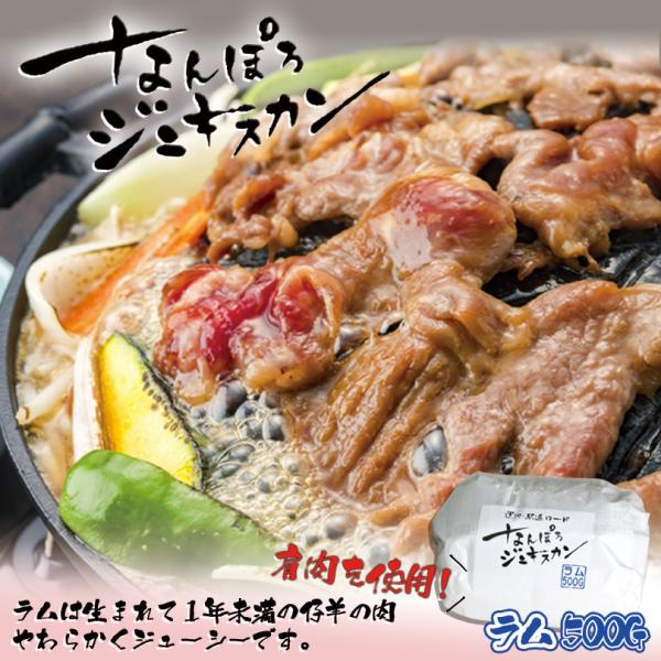 なんぽろジンギスカン 味付羊肉 ラム 500g 冷凍 北海道