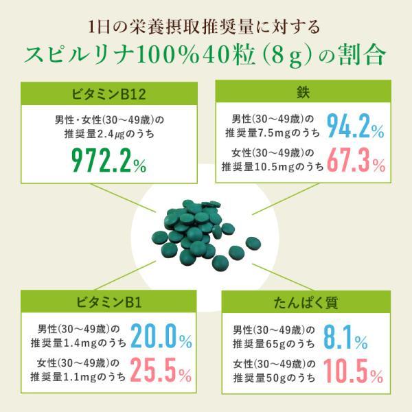 スピルリナ100% 2400粒 サプリメント ポイント消化 BCAA 健康食品|sp100|11