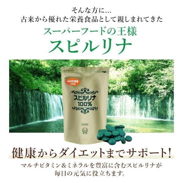 スピルリナ100% 2400粒 【サプリメント】ポイント消化|sp100|03