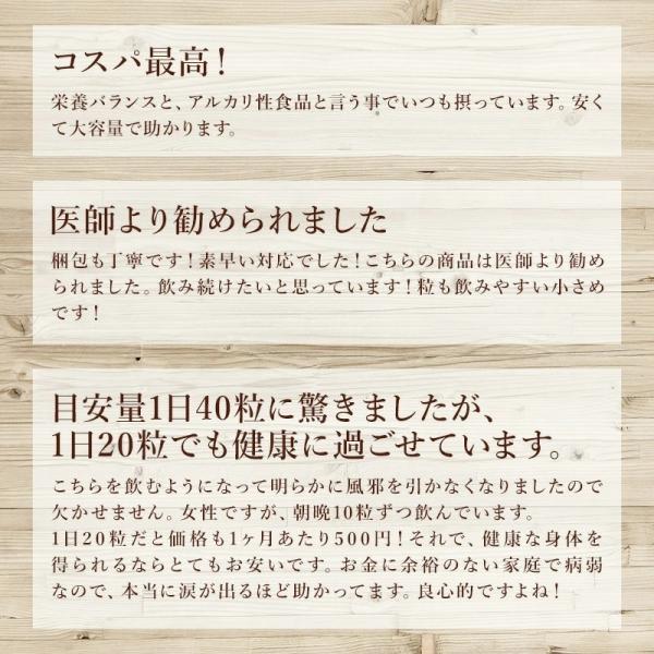 スピルリナ100% 2400粒 【サプリメント】ポイント消化|sp100|05