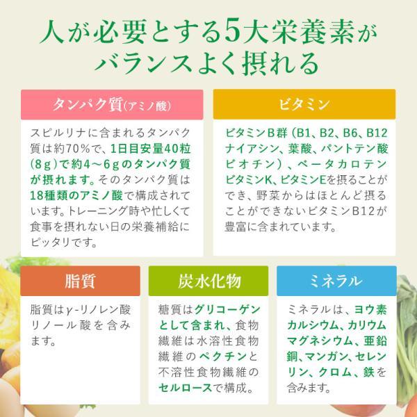 スピルリナ100% 2400粒 サプリメント ポイント消化 BCAA 健康食品|sp100|09
