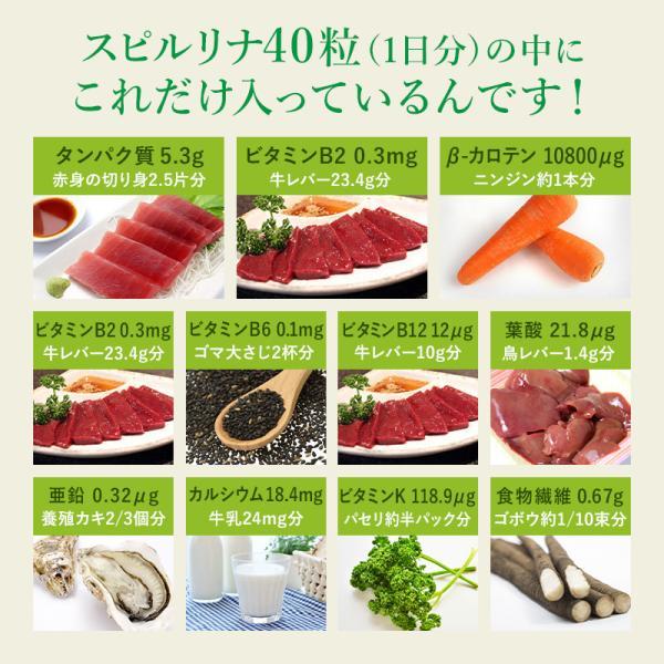 スピルリナ100% 2400粒 サプリメント ポイント消化 BCAA 健康食品|sp100|10