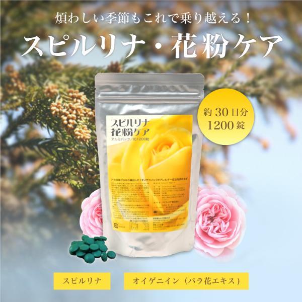 スピルリナ・花粉ケア サプリメント ポイント消化 健康食品|sp100|02