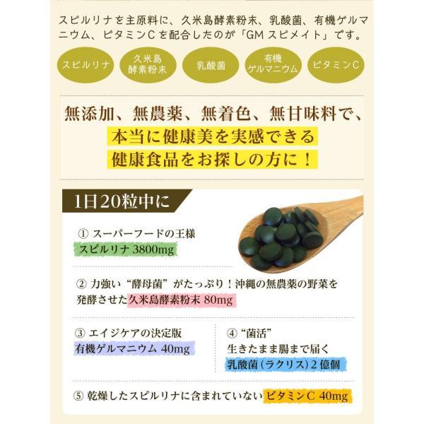 GMスピメイト 3600粒 スピルリナ 乳酸菌 酵素粉末 ビタミンC  サプリメント ポイント消化 健康食品 sp100 06