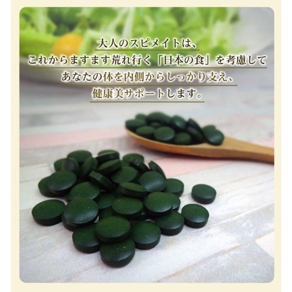 GMスピメイト 3600粒 スピルリナ 乳酸菌 酵素粉末 ビタミンC  サプリメント ポイント消化 健康食品 sp100 07