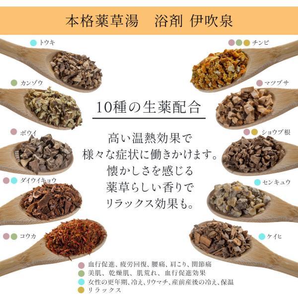 入浴剤ギフト 美肌入浴剤10日間セット 医薬部外品につき効果効能はバツグン! ネコポス 送料無料|spalabo|09