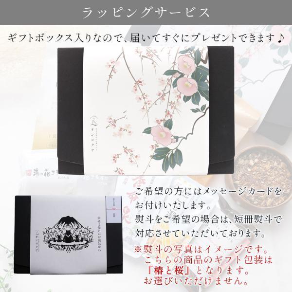 入浴剤ギフト 美肌入浴剤10日間セット 医薬部外品につき効果効能はバツグン! ネコポス 送料無料|spalabo|14