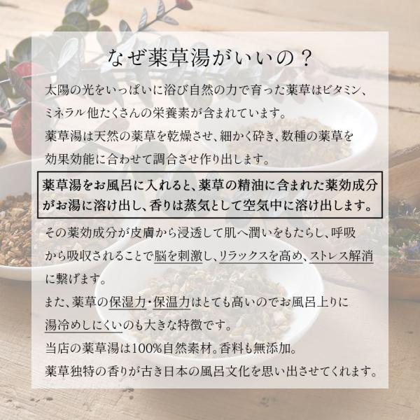 入浴剤ギフト 美肌入浴剤10日間セット 医薬部外品につき効果効能はバツグン! ネコポス 送料無料|spalabo|03