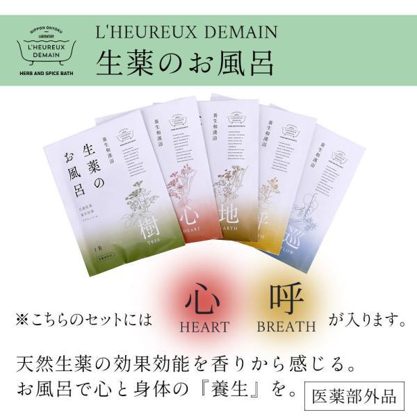 入浴剤ギフト 美肌入浴剤10日間セット 医薬部外品につき効果効能はバツグン! ネコポス 送料無料|spalabo|06